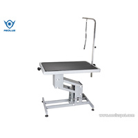 Aeolus Large Hydraulic Professional Dog Grooming Table