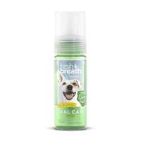 Fresh Breath Oral Care Fresh Mint Foam 133ml