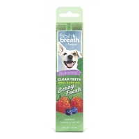 Fresh Breath Clean Teeth Gel Berry Fresh 59ml